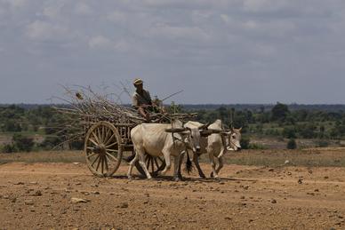 Myanmar 3