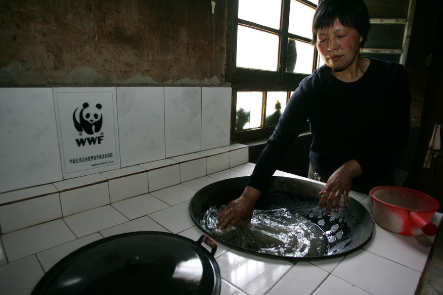 Cookstoves to Protect Panda Habitat